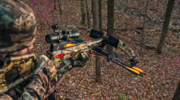 The Fastest Crossbows On The Market featured image