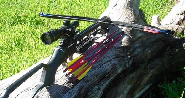 Top Crossbow Brands: A Complete Review featured image